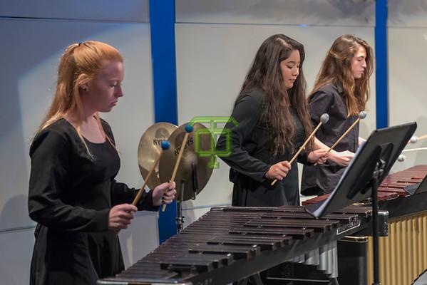 Percussion Tech