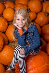 Pumpkin Patch / Halloween