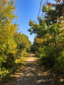 Eastman Gelatin Rail Trail / South Reading Line