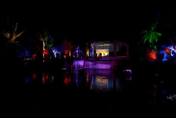 Naples Botanical Garden Holiday Light Show 12.10.17