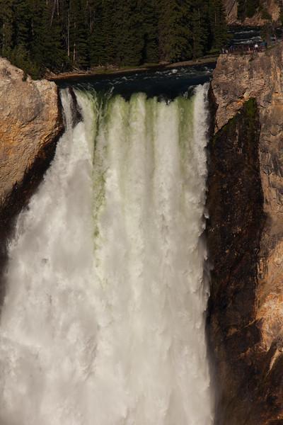 Yellowstone Misc-76.jpg