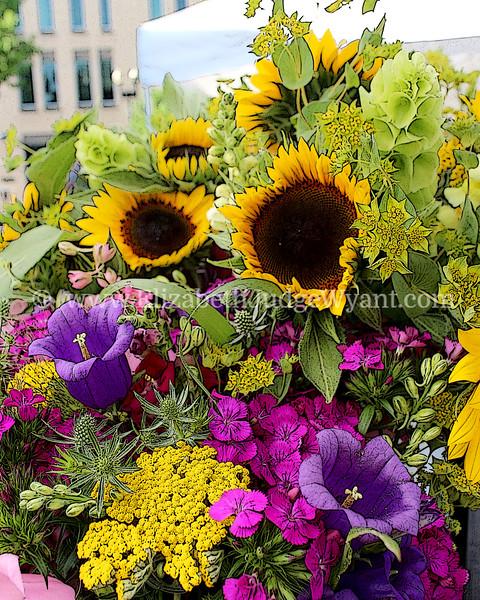 Easton Farmers Market, Easton, PA 6/15/2013