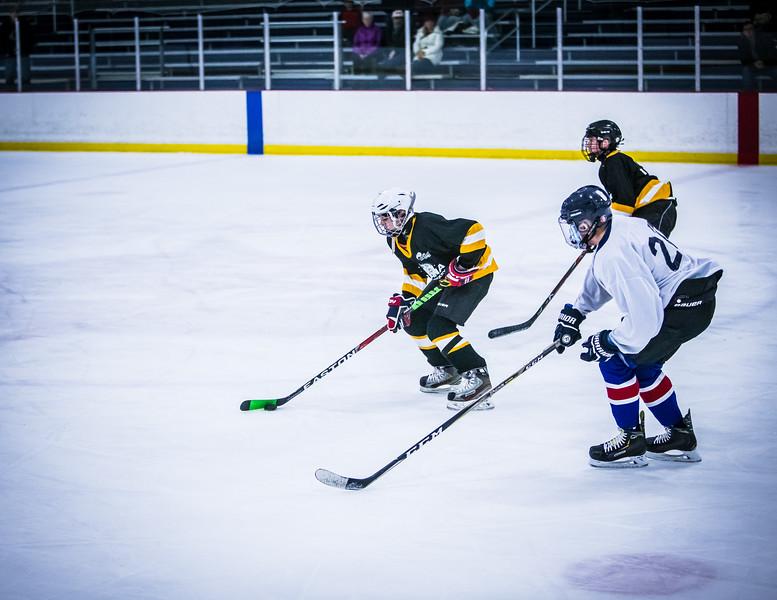 Bruins2-306.jpg