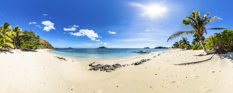 The Palm Tree at Paradise Beach - Yasawa - Fiji Islands