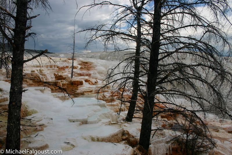 Yellowstone-059.jpg