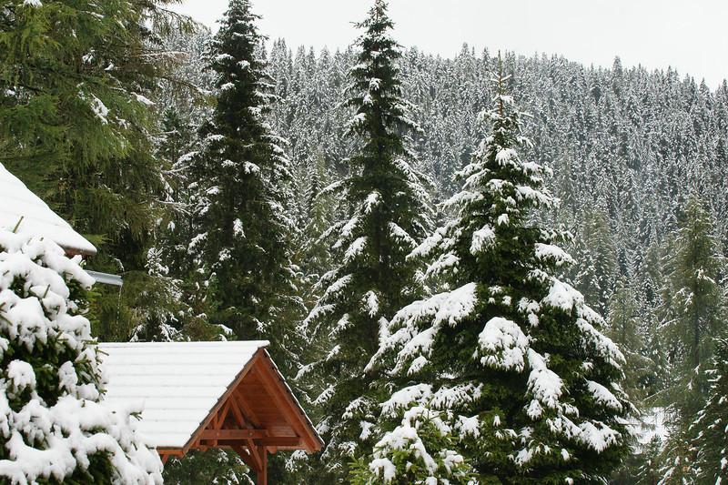 Vakantie Oostenrijk-06432.jpg