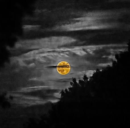 Lex Moon 8 28 2015