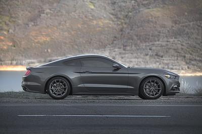 Mustang Lowered (04.18.15)