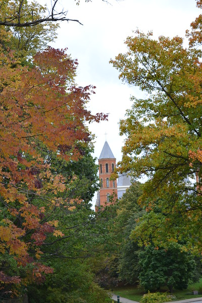 2012 Fall around campus (8).JPG