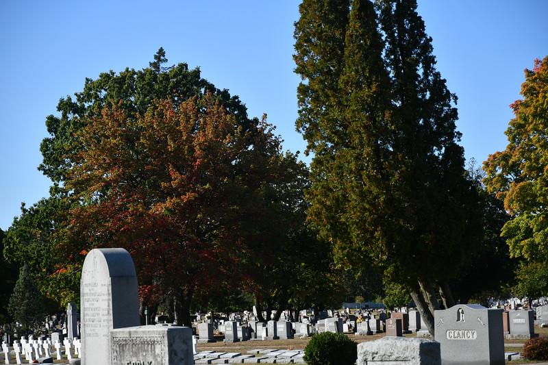 St-Joseph-Cemetery-Oct2019-7.jpg