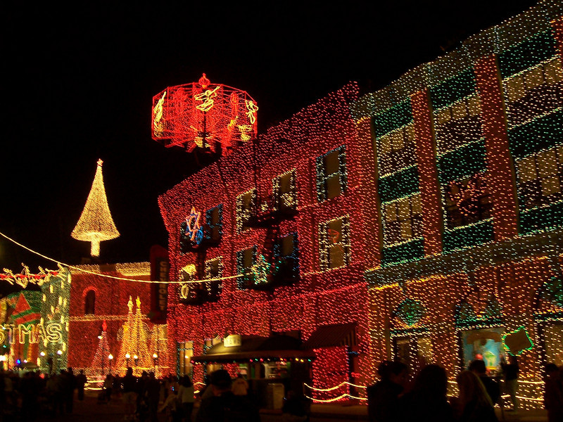 The most holiday lights, like, ever.  God, the electric bill....