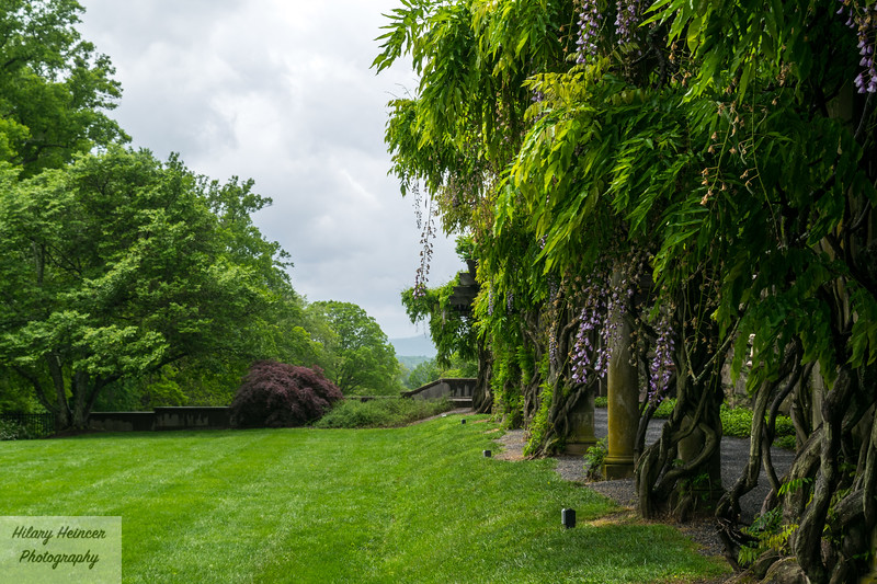 Biltmore Estate Gardens 3