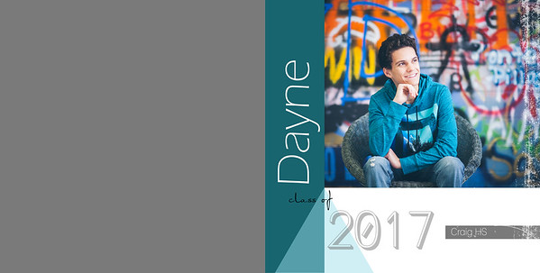 Dayne Album
