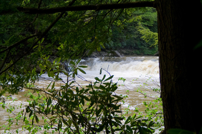 0705_Swallow Falls State Park_050.jpg