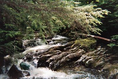 Donna in Vermont