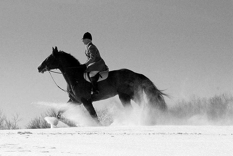 winter hunt.JPG