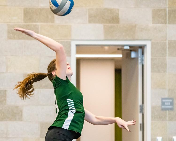 2018-Stvenson_Lady's_Volleyball-4.jpg