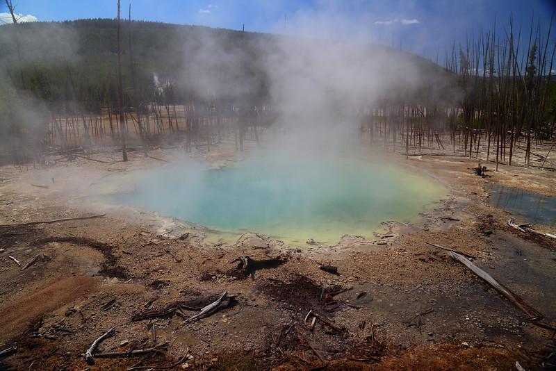 Yellowstone 076.JPG