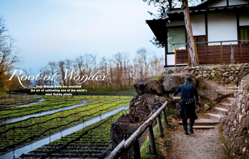 Steve-Morin-Japan-Photographer-Hanahou-Wasabi.3.png