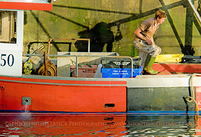 Offloading the Day's Catch, Kitchen Cove