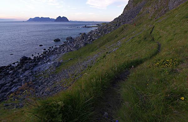 Værøy - summer