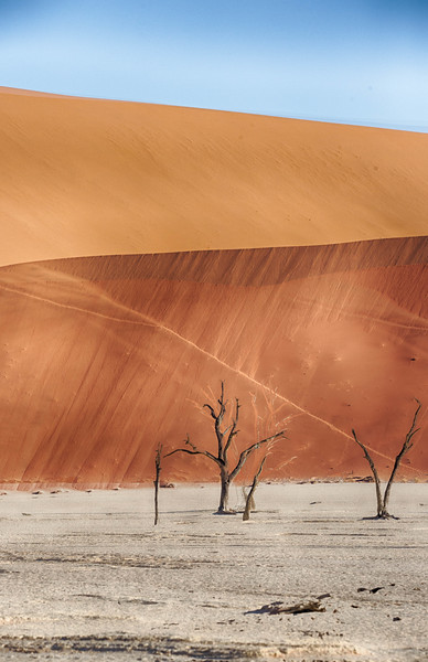 Namibia Baby-122.jpg