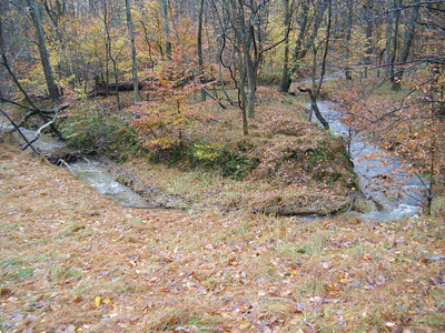 October 2012 Bon Secours Stream Watch Report