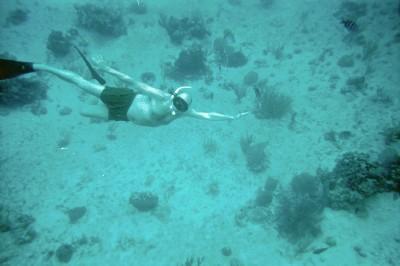 Snorkel3.jpg