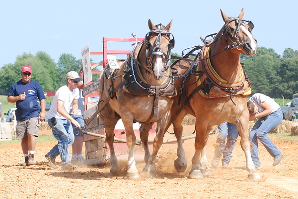 2009 Horse Pull