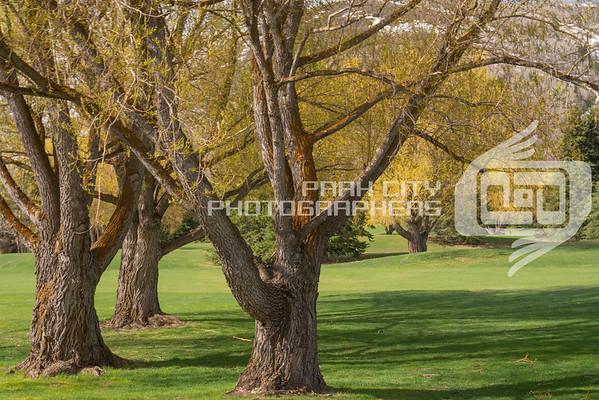 Park City Golf Course