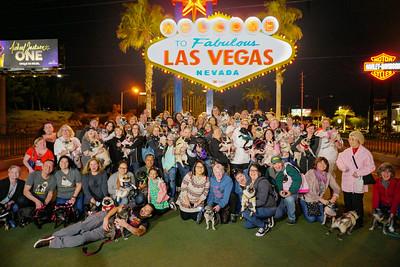 Vegas Pug Party 2019