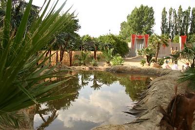 Fata Morgana 2006 - Ster 4 Woestijn met bedoeïenendorp