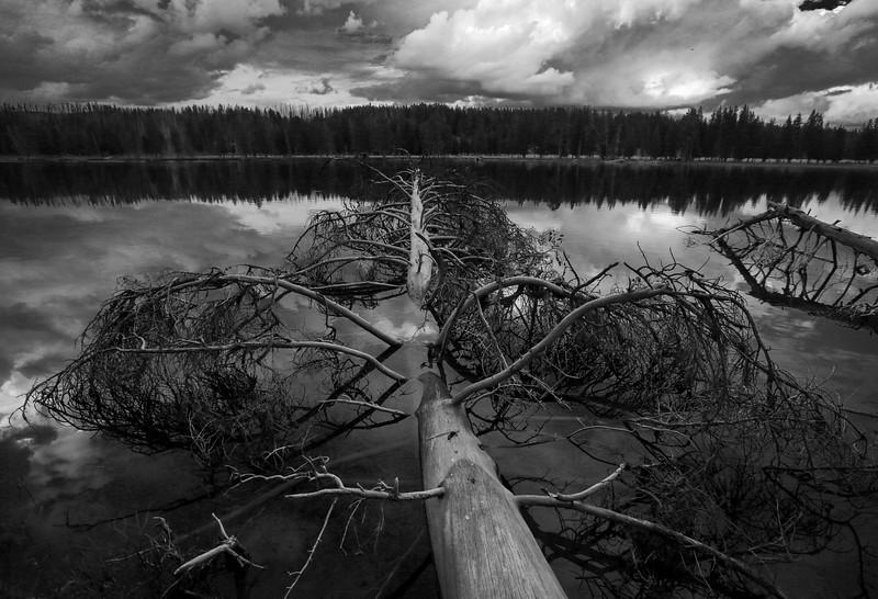 Yellowstone_33.jpg