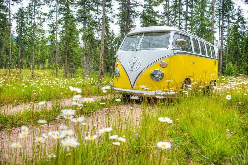 66 Porsche bus Samba Montana July 2016