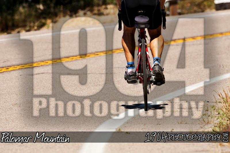20100530_Palomar Mountain_0078.jpg
