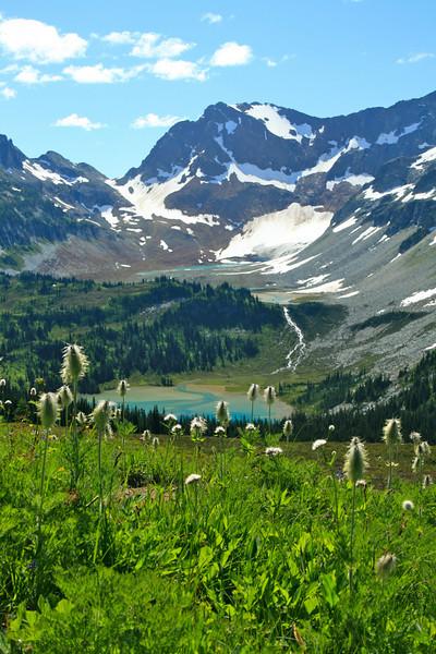 Anemone, Lyman Lake, and Spider Pass.