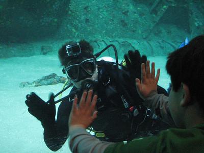 NC Aquarium PKS 012014
