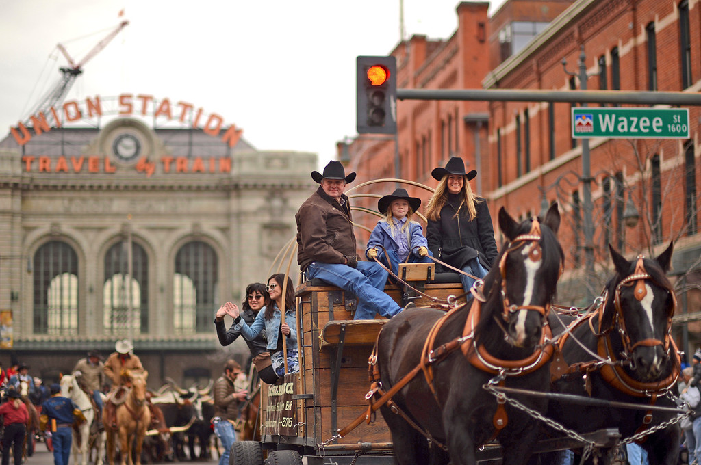 . 107th National Western Stock Show Parade is kicked off at Downtown Denver on Thursday. Denver, CO, January 10, 2013.  Hyoung Chang, The Denver Post