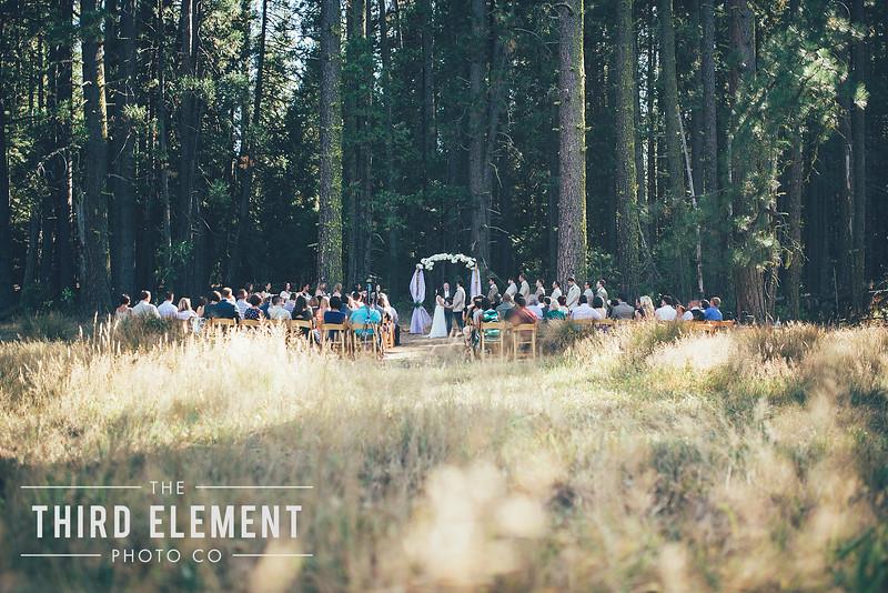Third Element Photo Co Brittney + Errol Yosemite Wedding Hetch Hetchy San Francisco_0012.jpg