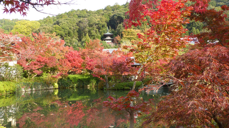 Kyoto / de Eikando Zenrin-ji tempel