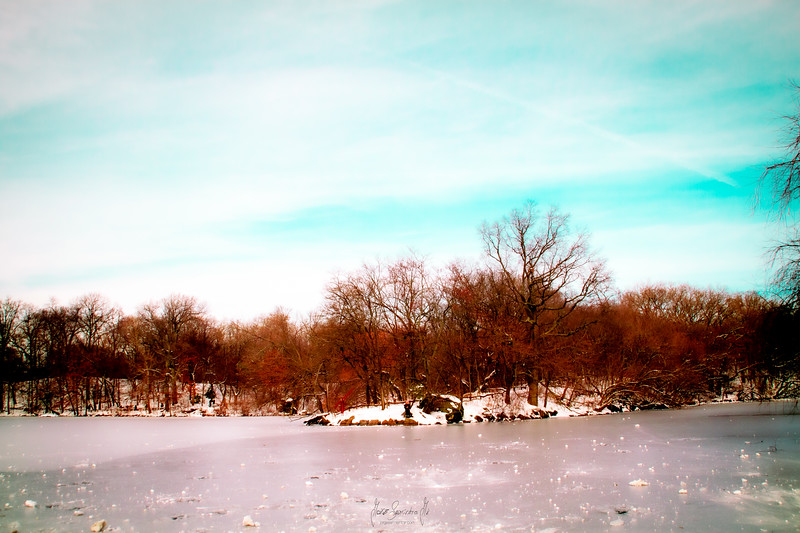 winter-lake-nyc-central-park-photographer-newark-new-jersey-jorge-sarmiento-jr-IMG_7384.jpg