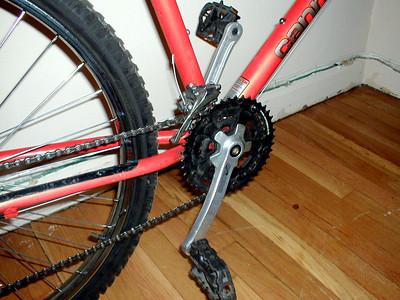 Gina The Wonder Bike