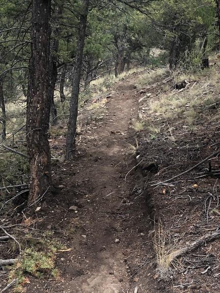 DudBob-Trail.jpg