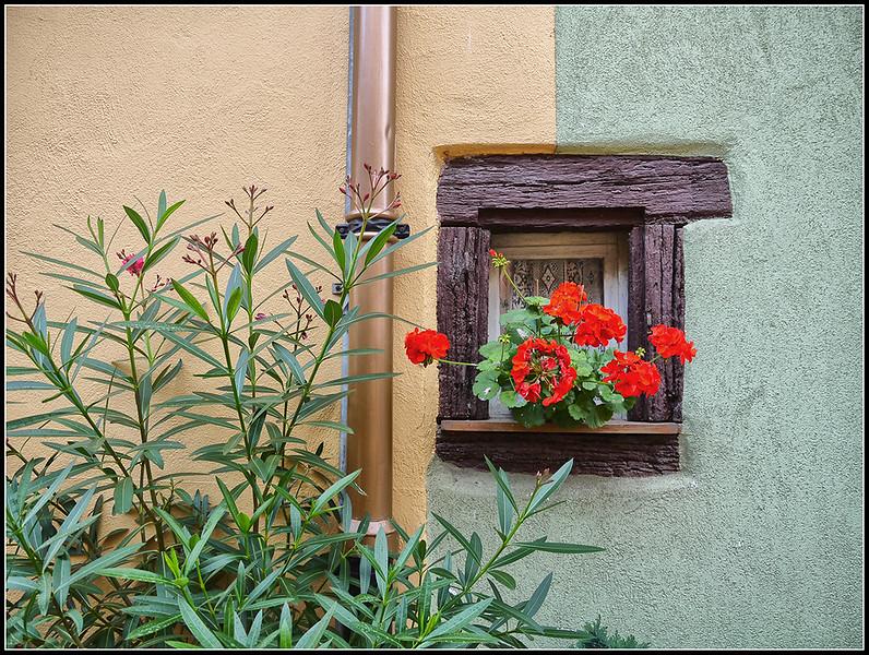 2011-09-Eguisheim-148.jpg