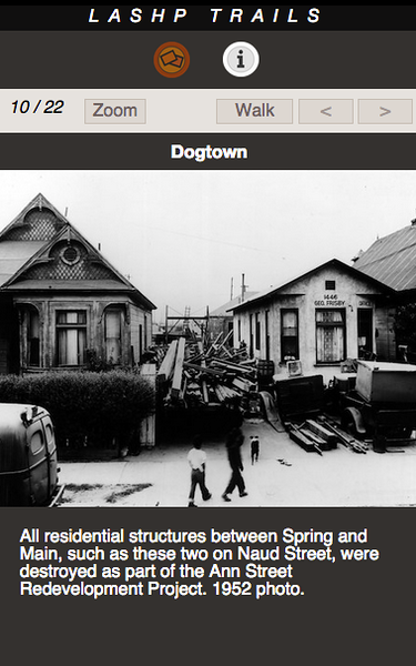 DOGTOWN 10.png