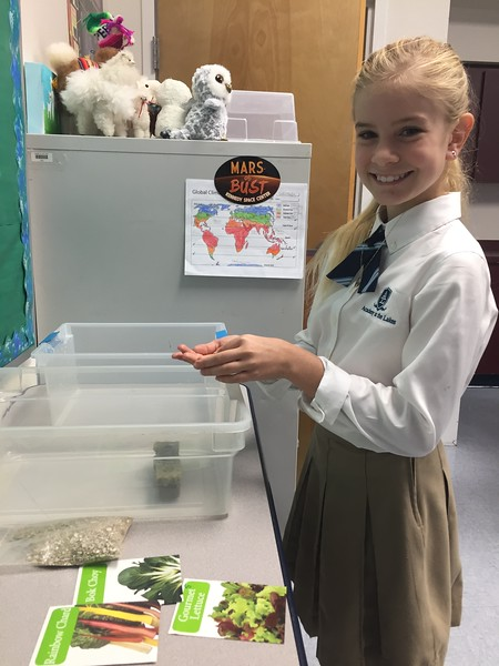5/6 Science Fair Projects 2018