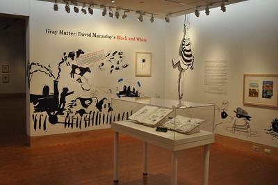 2015 Gray Matter: David Macaulay's Black and White Installation