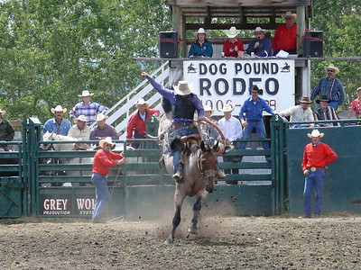 Saddle Bronc Section 2