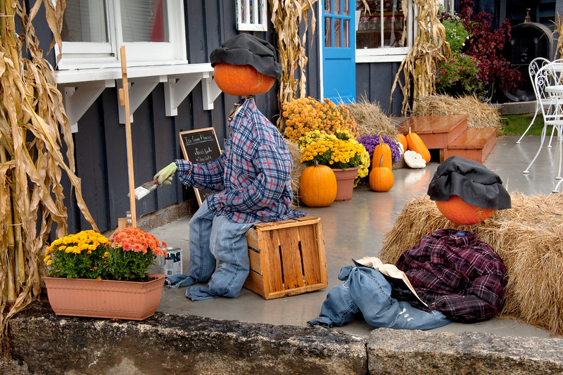 Pumpkin People apparently prefer the more sedentary pursuits.