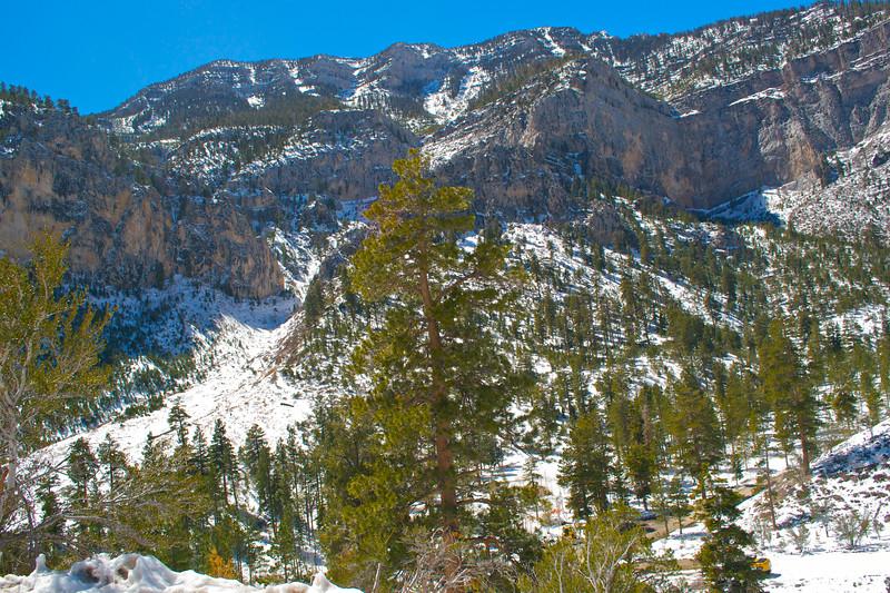 Mojave Desert & Red Rock Canyon, Vegas-DSC_2194-071.jpg